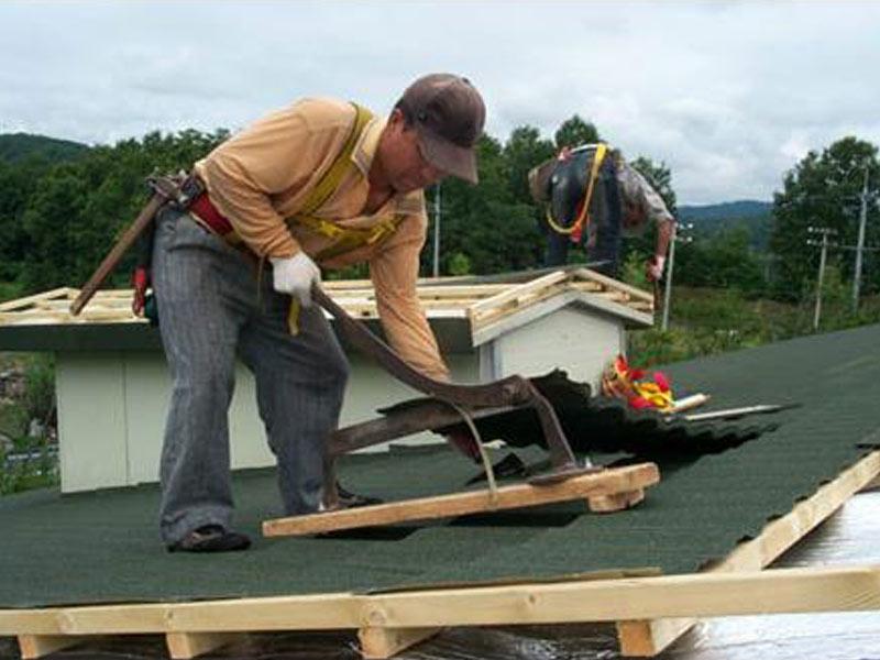 New Sunlight Roof  Array image29