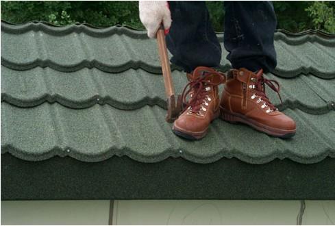 New Sunlight Roof  Array image151